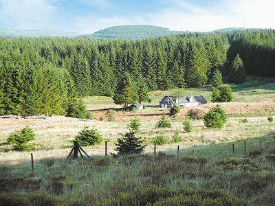 Craigenrae Cottage