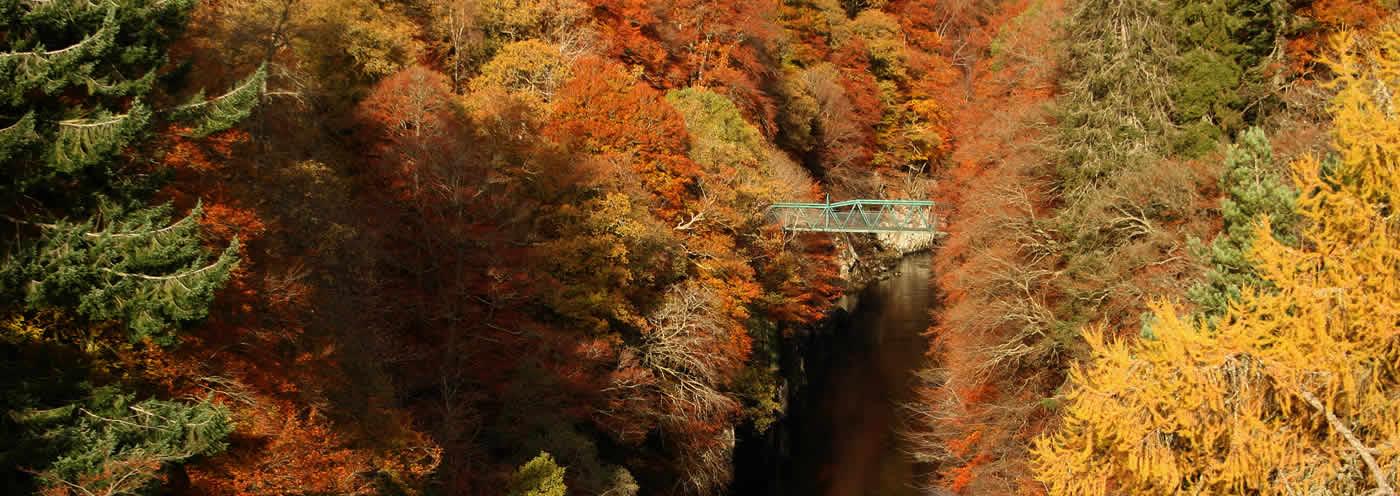Pitlochry in Autumn